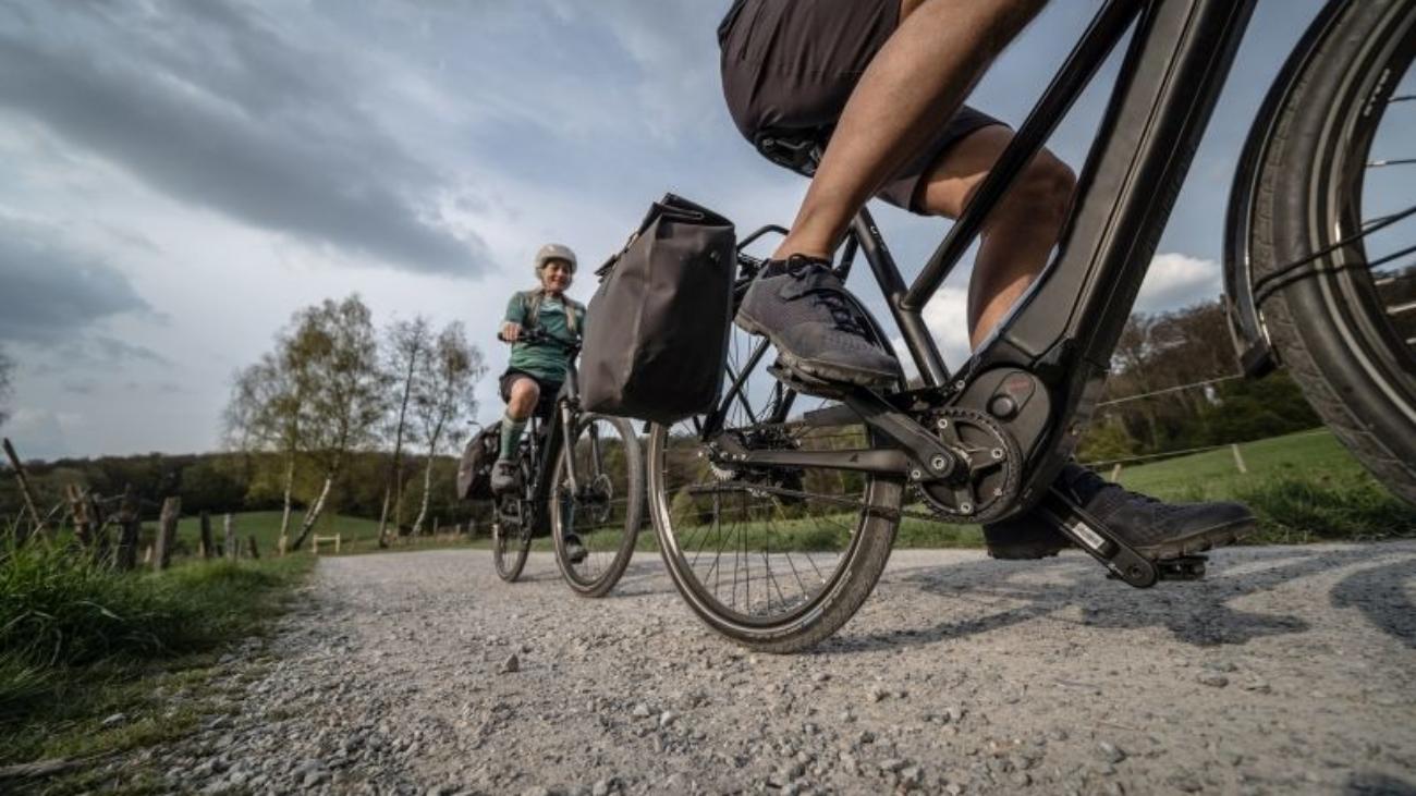E-Bikes 2020